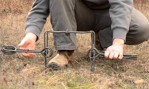 The Easy and Practical DIY Snares to Catch Small Wild Game5