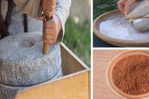 6 Backyard Plants You Can Turn Into Bread
