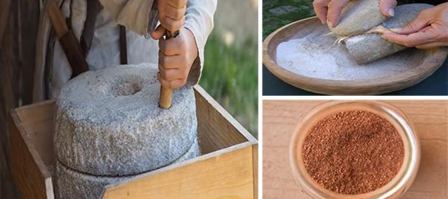 6 Backyard Plants You Can Turn Into Bread