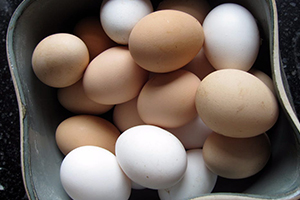 How to Preserve Eggs with Waterglass