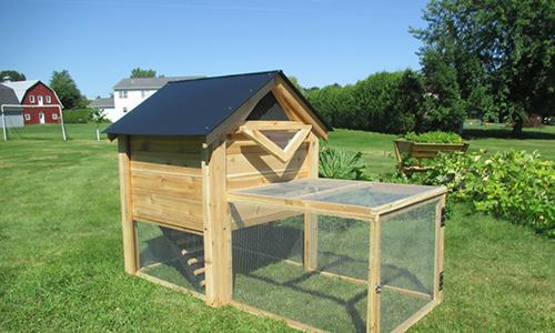 10 Survival DIY Projects You Can Start on Your Property Right Now - Chicken Coop