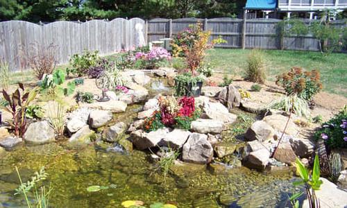 10 Survival DIY Projects You Can Start on Your Property Right Now - Fish Pond
