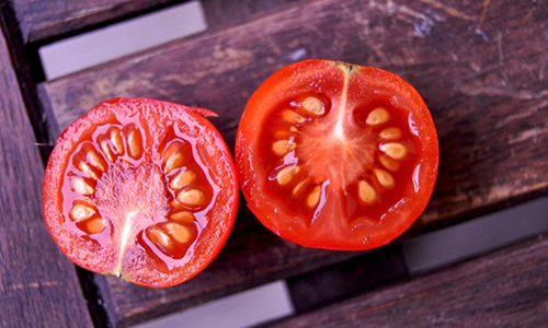 8 Plants That You Need To Know How To Harvest Seeds From