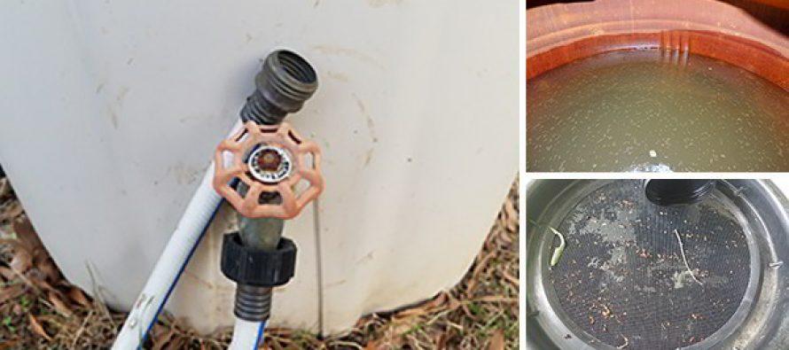 7 Mistakes To Avoid When Harvesting Rain Water