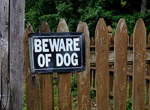 Avoid These 5 Signs on Your Property