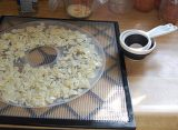How To Dehydrate Milk For Long Term Storage