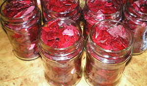 How to Preserve Your Whole Harvest for Winter Without Refrigeration