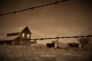 Farm Murders What You Need To Know If You Live On A Homestead