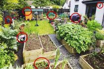 8 Small Survival Projects You Are Missing On Your Property