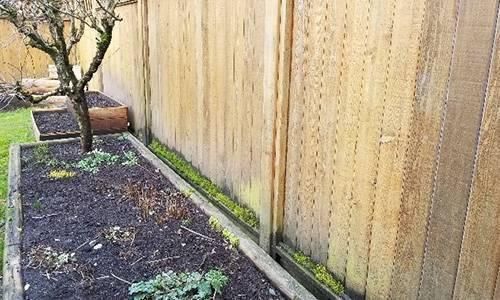DIY Punji Stick Traps To Defend Your Home