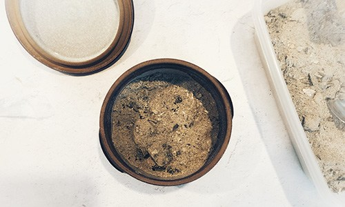 How To Preserve Your Food With Wood Ash