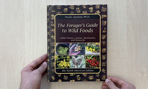 The Forager's Guide To Wild Foods Book Review