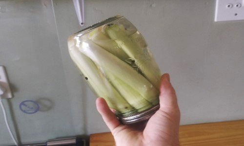How To Pickle Cattails For Long-Term Preservation
