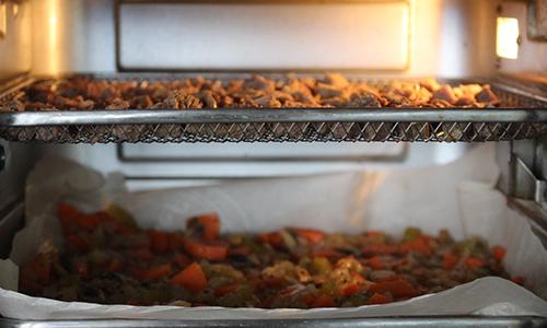 dehydrator/oven