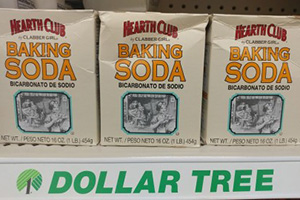 8 Homesteading Items You Should Get From The Dollar Store